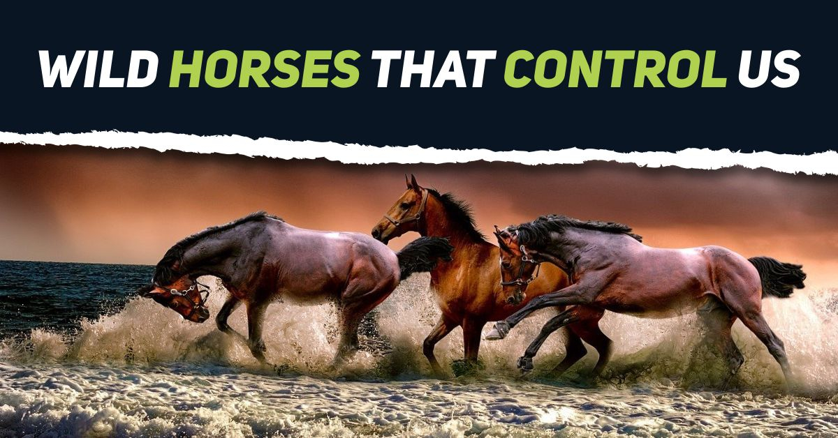 Each of us has un conscience horse that affects all our actions.